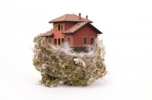house-nest